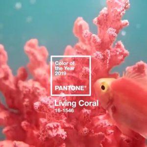 Cum să integrezi culoarea anului, living coral, în viața ta